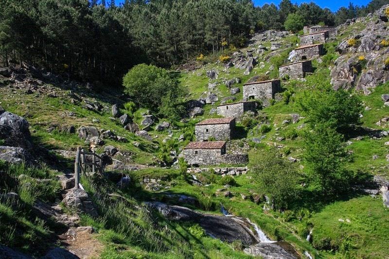 mills-folon-picon-12